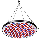 Niello Reflector 50W LED Pflanzenlampe LED Grow Light Vollspektrum Pflanzenlicht Led Grow Lamp nur 1 cm Dick mit Schalter für Zimmerpflanzen Gemüse und Blumen